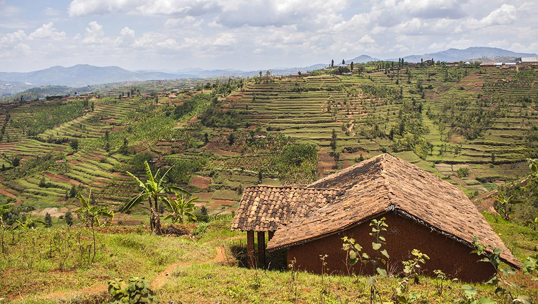 Utsikt över den vackra och bergiga rwandiska landsbygden.